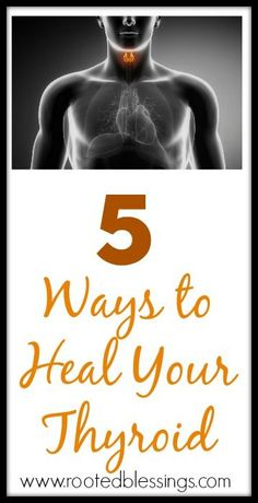 5 Ways To Heal Your Thyroid #thyroid #healing #hypothyroid Shared by http://www.easyfree.net