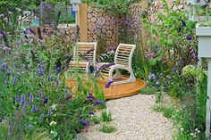 This tiny garden is packed with flowers and features to support birds and insects and could be copied in any tiny urban space. There's a pleasing mix of colour for summer, yet the stylish gabions would look good all year round, and provide vital shelter for hibernating insects. / RHS Gardening