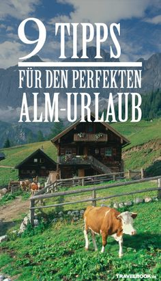Im Sommer zieht es viele in die Berge. Doch beim Buchen eines Alm-Urlaubs sollte man einiges beachten. Das Komfort-Level reicht vom Matratzenlager bis zum Butlerservice. Und dann sind da noch die berühmten Kühe, die Streichelversuche missverstehen könnten... 9 Tipps für das perfekte Alpenglück.