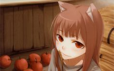 Spice and wolf holo the wise wolf wallpaper Holo Wallpapers, Anime Backgrounds Wallpapers, Wolf Images, Wolf Pictures, Spice And Wolf Holo, Wolf Deviantart, Uhd Wallpaper, Wolf Quotes, Wolf Girl