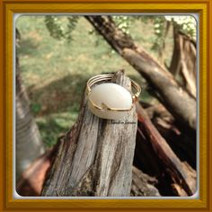 14kt Goldfilled Puka shell Ring by SandeeSavini on Etsy, $14.00