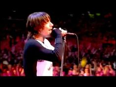 Red Hot Chili Peppers  // Universally Speaking  (live at Slane Castle)