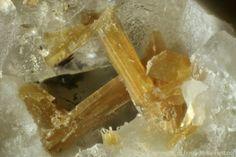 Elpidite (Var: Calcian Elpidite), (Na, Ca)ZrSi6O15•3(H2O), Gjerdingselva, Nordmarka, Lunner, Oppland, Norway. A 1,5 mm group of brown, translucent, terminated calcian elpidite crystals in vuggy ekerite-rock. Copyright: © OT. Ljøstad
