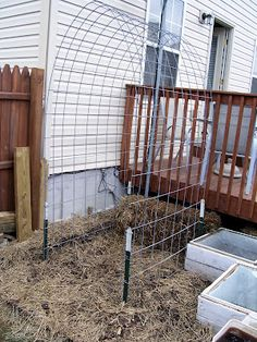 trellis for his cukes & squash. TO DO between the two raised beds. trellis for his cukes & squash. TO DO between the two raised beds.trellis for his cukes & squash. TO DO between the two raised beds. Cattle Panel Trellis, Cattle Panels, Garden Arch Trellis, Diy Trellis, Plant Trellis, Trellis Ideas, Raised Garden Beds, Raised Beds, Indoor Garden