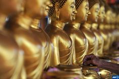A Buddhist devotee drops coins into golden Buddha statues as a symbol of blessing during the Vesak Day at a Buddhist temple in Kuala Lumpur, Malaysia Kuala Lumpur, Golden Buddha Statue, Buddha Statues, Malaysia Travel, Free Mind, Peace And Harmony, Buddhist Temple, Elements Of Design, Spiritual Inspiration