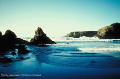 Do You Know How Important Art is to Mendocino History? | Sea Rock Inn | Mendocino, CA