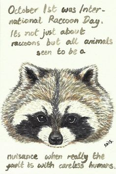 Random Thoughts of a Bored Artist: 2.0 Day 117 - Raccoons Rock!