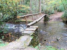 Cataloochee Valley (Great Smoky Mountains National Park, NC): Top ...