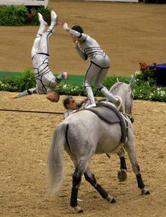 Vaulting, my favorite horse sport