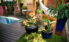 Sustentabilidade em jardins de todos os tamanhos - Jardinagem - iG