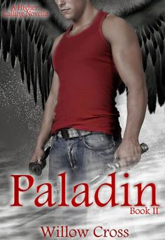 Shh... Kymberlee's reading!: My review of Paladin by Willow Cross