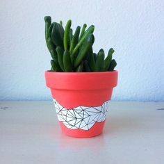 A personal favorite from my Etsy shop https://www.etsy.com/listing/269372539/3-terra-cotta-mini-cactus-pot-hand