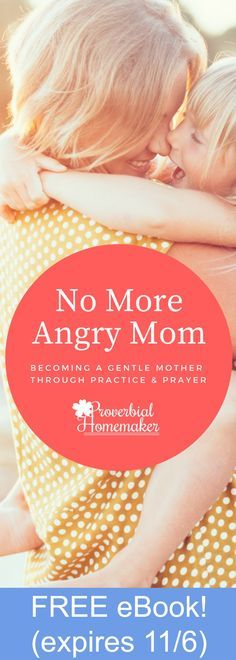 Struggling with anger? You're not alone! You'll love this Christ-centered ebook that guides you through practical steps toward a biblical view of anger and tools to help you overcome it in your parenting. Regularly $7.99, FREE through 11/6/17 only!