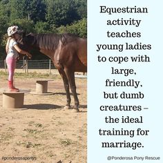 Getting ready for marriage #equinestyle