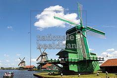 Op de Zaanse Schans draaien nog altijd tien paar wieken.  De molens zagen hout…