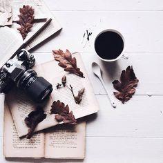 grafika autumn and fall