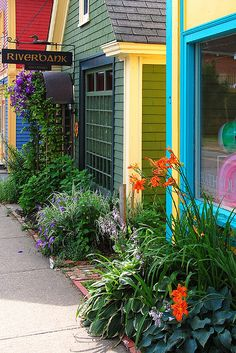 fix up our old shed, and have nice flowers in front of it. love this