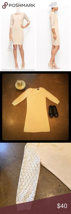 Ann Taylor Sweater Dress The perfect summer stamper! Wear it on a breezy night out, awesome blend of lace like sleeves and cotton knit give it a fun and flirty feel. Excellent condition! Ann Taylor Dresses Midi