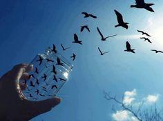 Фотография: игры с облаками