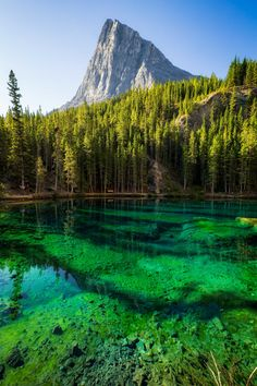 Beautiful Places To Visit, Oh The Places You'll Go, Canadian Travel, Canadian Rockies, Camping And Hiking, Hiking Trails, Backpacking, Alberta Travel, Canada Destinations