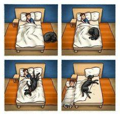 #dogs #buonanotte