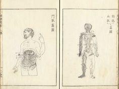 https://www.nlm.nih.gov/exhibition/historicalanatomies/Images/1200_pixels/kaitai_12.jpg