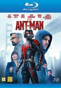 Ant Man 2015 online subtitrat romana bluray .