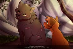 """do you miss shadowclan? Yellowfang meowed solemnly, ""I miss the old shadowclan.it has been a time. Warrior Cat Memes, Warrior Cats Fan Art, Warrior Cats Series, Warrior Cats Books, Warrior Cat Drawings, Animals And Pets, Cute Animals, Love Warriors, Warriors Memes"