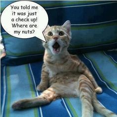 """""""You told me it was a check-up....""""   #lol"""