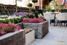 Patio, Garden, Outdoor Decor, Plants, Home Decor, Houses, Garten, Decoration Home, Room Decor