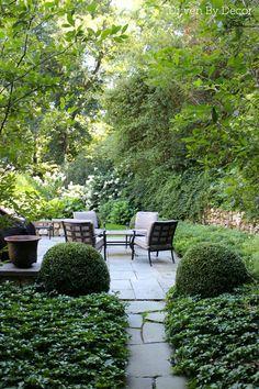 Nice Normal Beautiful Back Yard Cool Walkway and nice plants RealPalmTrees.com