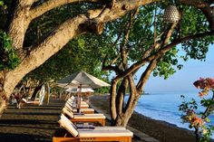 🇮🇩 Bali, Matahari Beach Resort & Spa Hotel Resort Bali, Resort Spa, Hotel Spa, Hotel Reviews, Beach Resorts, Outdoor Furniture, Outdoor Decor, Best Hotels, Trip Advisor