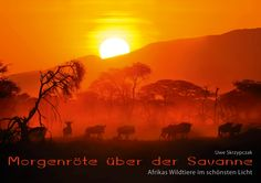 Sunset in the #Serengeti …. #calendars love for all #Africa #Lovers.   #animals #serengeti #wildlife #sunset #sunrise #travel #calendar #cheetah #lions #wildlifebeest #wildlife #safari
