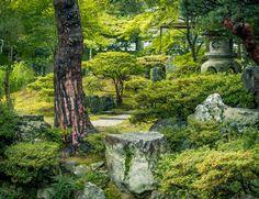 Imperial Palace, Kyoto #garden #gardening #gardendesign