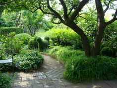 Ulla Molins garden, on of swedens most famous gardendesigners gives a lot of inspiration how to use green colors and shape in the garden. This spot is so beautyful...