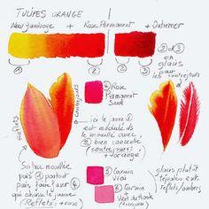 Aquarelle-bota-clairefelloni  oranges, reds