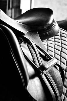 Love these black and white saddle shots....