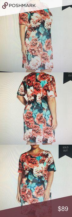 NWT  Tahari Floral Sheath Dress 24W NWT Tahari Scuba-knit dress.  Princess seams for a flattering fit, architecturally shaped neckline, fully lined, Tahari Dresses Midi