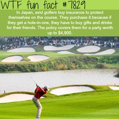 Japan weird hole-in-one tradition - WTF fun facts Wtf Fun Facts, True Facts, Funny Facts, Funny Jokes, Random Facts, Japan Facts, Weird But True, Facts You Didnt Know, Mind Blowing Facts
