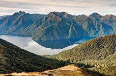 View from Kepler Track, NZ #newzealandwalkingtours #newzealandwalkingtracks http://newzealandwalkingtours.com