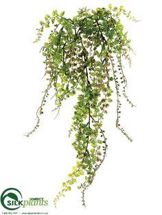 Button Fern, Berry Hanging Bush - Green - Pack of 24 - (CRG-119FBPS)   silkplantsdirect.com