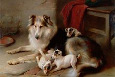 Vintage artwork depicting a Collie (aka Scotch Collie) with puppies.