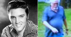 People Think 'Elvis Presley Is Still ALIVE And He's Been Spotted In Graceland Graceland, Elvis Presley, Need To Know, Weird, Playing Cards, People, Wordpress, News, Playing Card Games