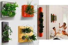 Jardines verticales con macetas colgantes. (pág. 3) | Cuidar de tus plantas es facilisimo.com