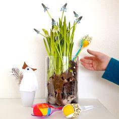 Ostern, Blumen ,Traubenhyazinthe im Glas, schaeresteipapier,