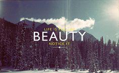 full of beauty