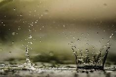 Rain Walker - Alan R Marlowe #rain #drops