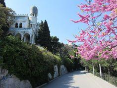 Russia, Crimea - the beauty of Simeiz.