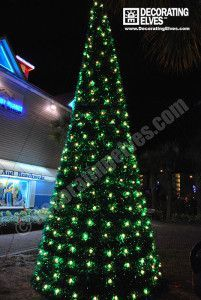 Commercial Outdoor Christmas Tree Lights Tampa Holiday Lighting