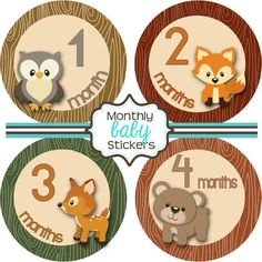 Hey, I found this really awesome Etsy listing at https://www.etsy.com/listing/181055134/monthly-baby-stickers-baby-shower-gift